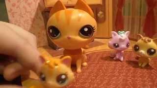 Обзор коллекции : Кошка и котята из коллекции