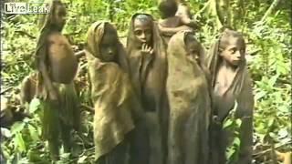 Племя первый раз видит белого человека  1976 год  Папуа Новая Гвинея  Переполняет десятками эмоций  1
