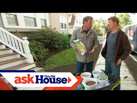 How to Patch a Lawn With Grass Seed | Ask This Old House