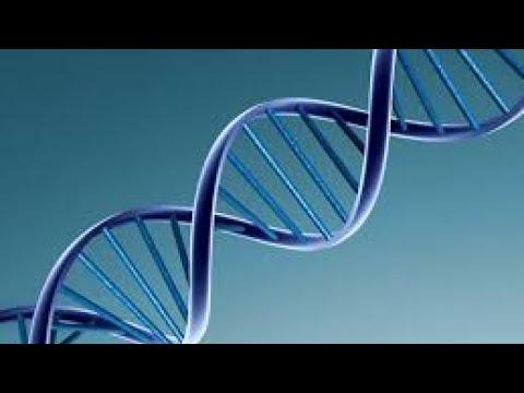 فحوصات الحمض النووي على الإنترنت.. أين تذهب بيانات الزبائن؟  - 14:55-2018 / 11 / 12