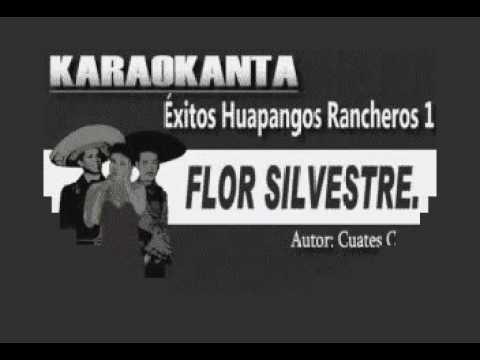 Karaoke Flor Silvestre en Gm