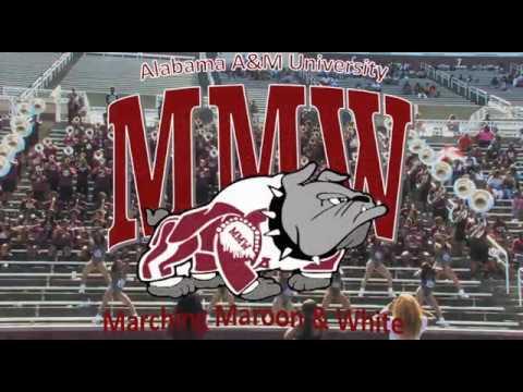 Aamu Marching Maroon White Fan Day