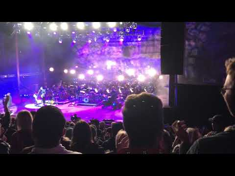 Seal (with the Colorado Symphony)-Fly Like an Eagle