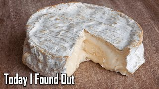 Is It Safe To Eat Cheese Rinds?