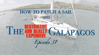 How to Patch a Sail; and Exploring the Galapagos [Sailing Zatara Ep 31]