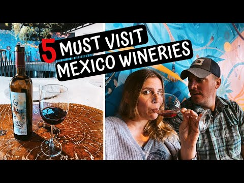 5 Must Visit WINERIES in the VALLE DE GUADALUPE | Ensenada Mexico