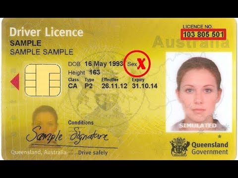 Without Youtube New Queensland Licence - Driver's Out To Gender Roll