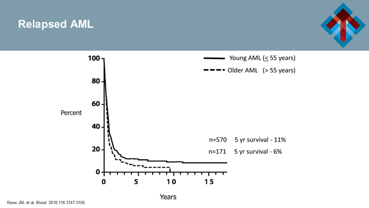 Acute Myeloid Leukemia: Incorporating Novel Treatment Approaches into  Clinical Pathways