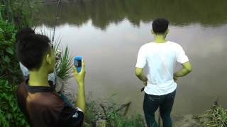 Video Mancing ikan patin dapat buaya putih download MP3, 3GP, MP4, WEBM, AVI, FLV November 2017