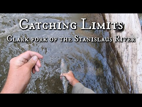 Catching Limits On The Clark Fork Of The Stanislaus River