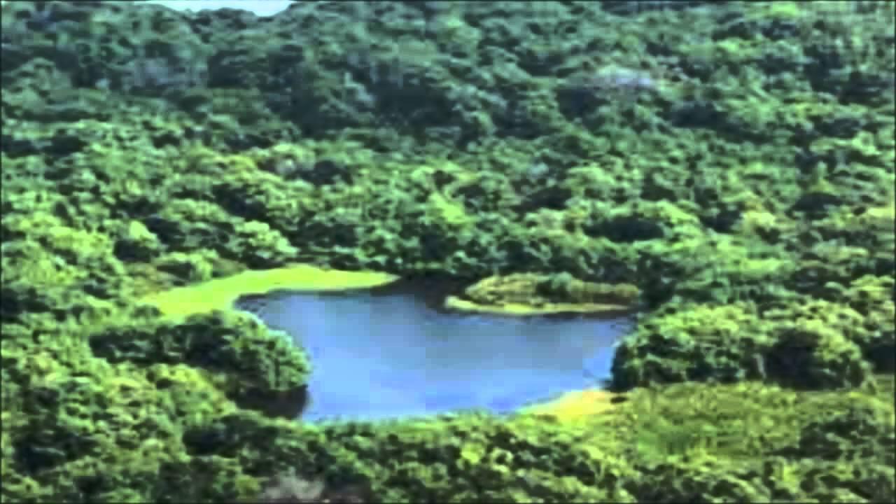 Que regiones naturales componen tu territorio youtube - Ambientadores naturales para la casa ...