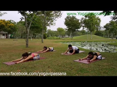 yoga flow 2