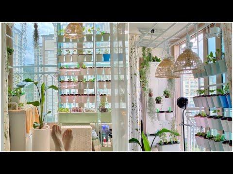 아파트 베란다텃밭 플렌테리어 식물 인테리어(feat. 화분, 거치대, 식물등 정보)