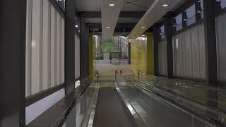 Brisbane Domestic Airport Arrivals - Walking Video