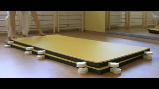 I-TIS: IJF APPROVED JUDO MAT