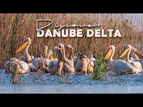 Discover the beauty of the Danube Delta Romania