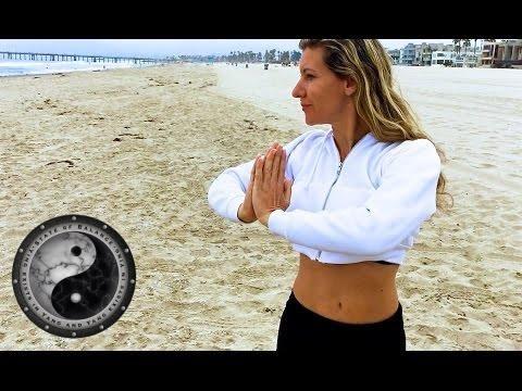 chi gong and tai chi qi gong energy healing exercises