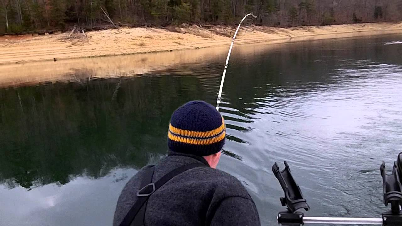 Striper fishing norris lake youtube for Norris lake fishing