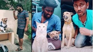 Tamil dubsmash with dogs Part 3  Dog lovers Tamil Entertainment