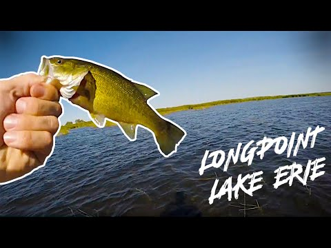 Longpoint, Inner Bay: Terrible Day For Large Mouth Bass