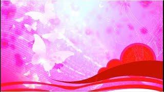 Rojo Color de Fondo de Mariposas | Descarga Gratuita Fondo de Vídeo | DMX HD BG 326