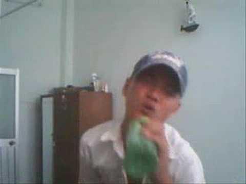 Hat Nhep Bai Vi Sao Chang Noi Hay Cuc