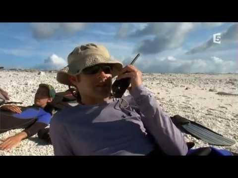 L'eden de la mer Documentaire 2014