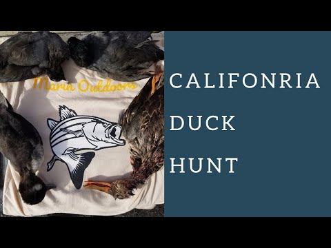 Sonoma - Napa Marsh Duck Hunt (Public Lands)