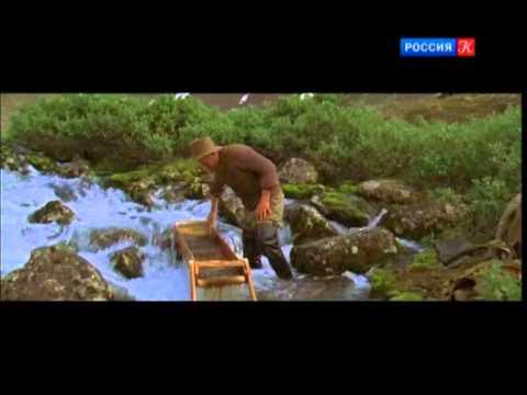 """""""Магия кино"""" о фильме """"Территория"""""""