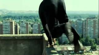 David Belle  Parkour Vs Police