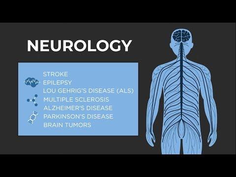 What is Neurology? - American Academy of Neurology