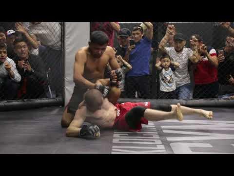 Колизей: Битва Чемпионов 6: Шохрух Алиев (Таджикистан) Vs. Урматбек уулу Чынтемир (Кыргыстан) |61 кг