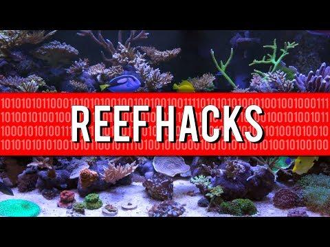 Top 10 Household Reef Aquarium Hacks