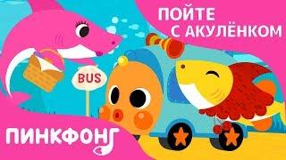 Акулёнок в Автобусе | Пойте с Акулёнком | Пинкфонг Песни для Детей