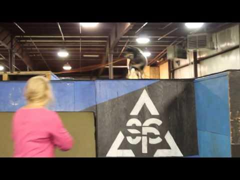 Shiba At Parkour Gym 2