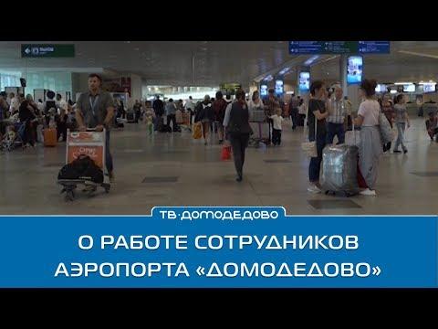 О работе сотрудников аэропорта «Домодедово»