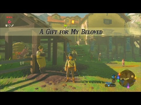 The Legend Of Zelda Breath Of The Wild Wii U Side Quest A