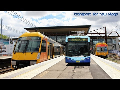 Transport for NSW Vlog No.1113 Penrith - Multi Mode