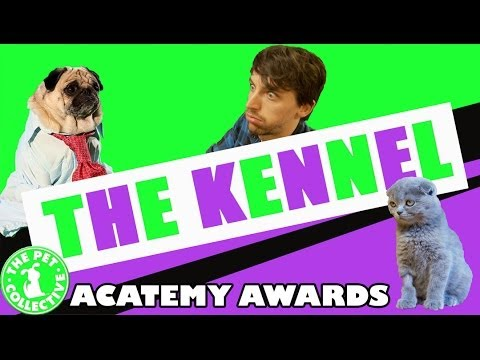 The Kennel - Acatemy Awards