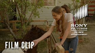 """ADVENTURES OF DALLY AND SPANKY Clip - """"Dally Rides Spanky"""" on DVD & Digital 9/10"""