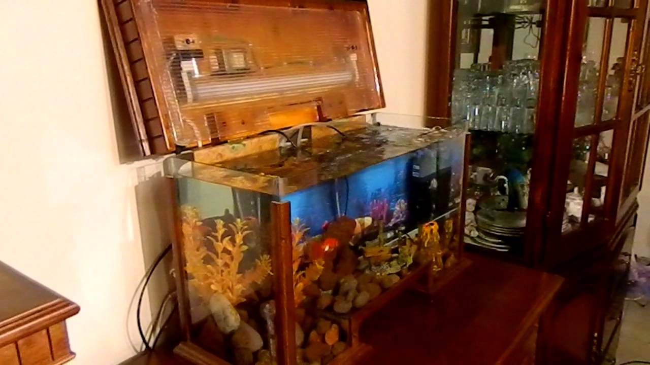 Pecera grande de lujo detallada en madera con luz youtube - Pecera de pared ...