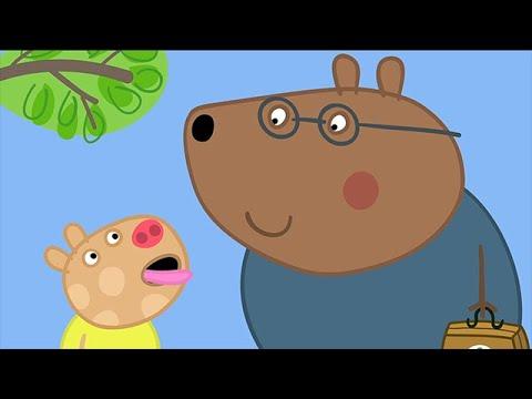We Love Peppa Pig Doctors 39 Youtube