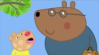 We Love Peppa Pig  Doctors 39