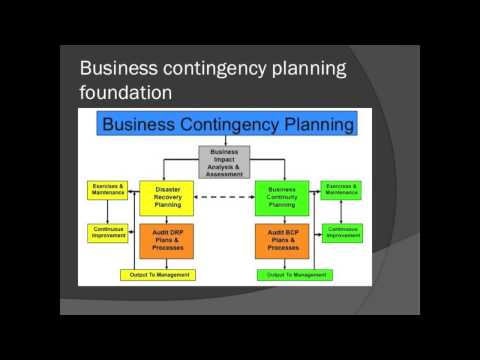 Emergency Management Business Contingency Programs in the Private Sector
