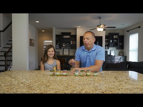Baby Food Challenge with Bree and Dad