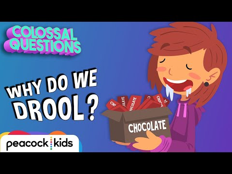 Why Do We Drool When Hungry?  COLOSSAL QUESTIONS