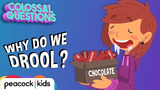 Why Do We Drool When Hungry? | COLOSSAL QUESTIONS