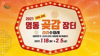 [1일차] 2021 영동곶감장터