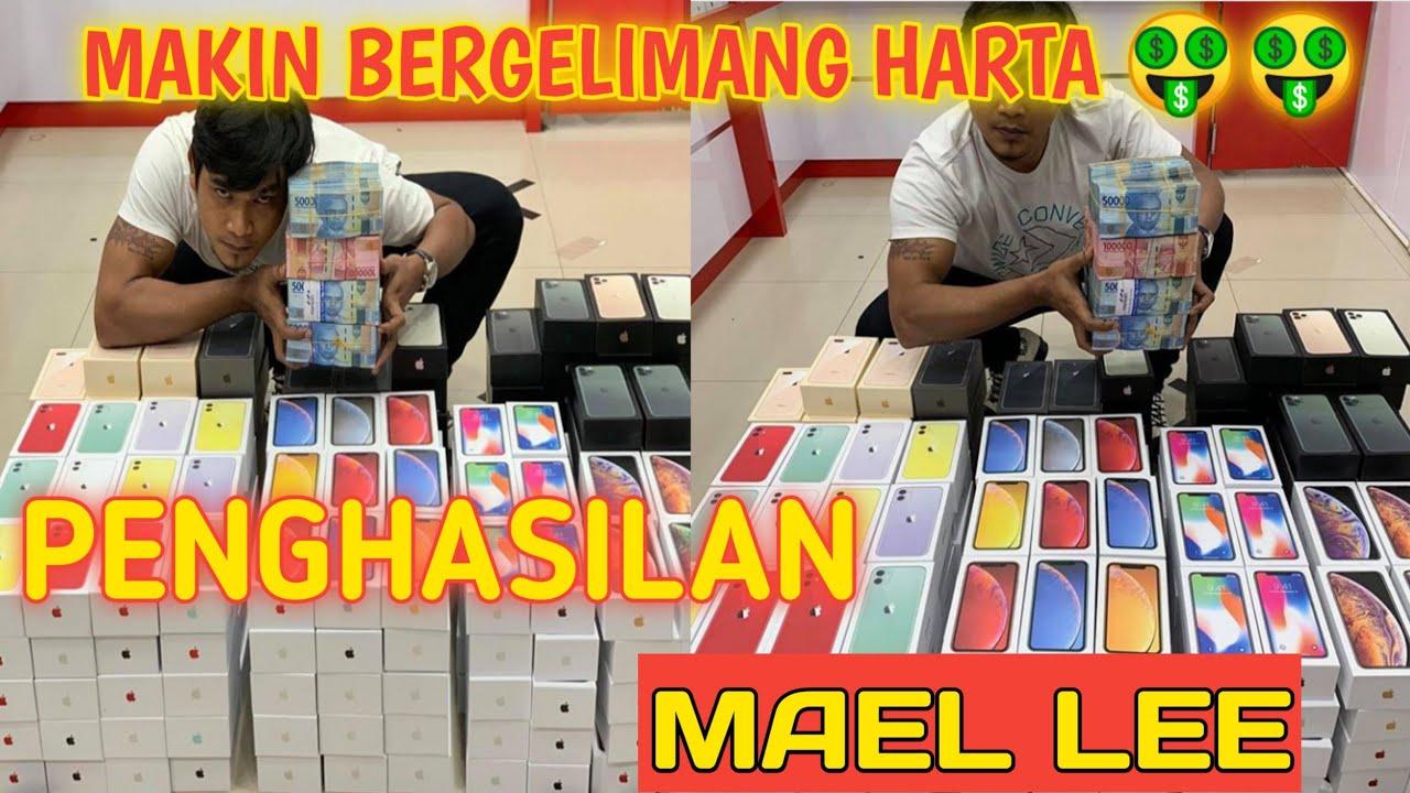 Makin Jaya!! Gaji Mael Lee Dari Youtube Setiap Bulan - YouTube