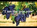 The True Vine - Easter 5 - 2 May